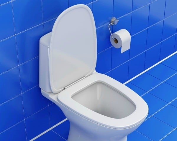 Why Is My Toilet Bowl Constantly Running?