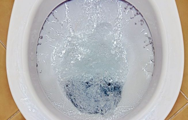 Why You Must Never Flush Garbage Down The Toilet
