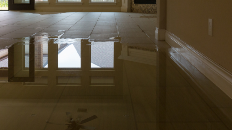 The health risks of home water damage begin with the flooding but may persist after the clean-up.